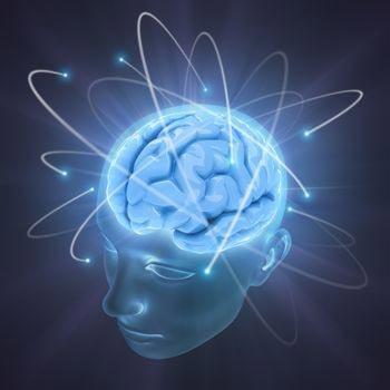 Hersengolven Pakket